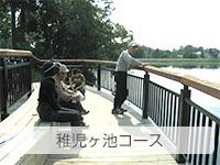 稚児ヶ池コース
